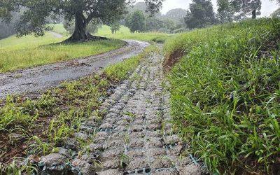 Roadside Runoff Drain at Bangalow NSW 2479 – 0165